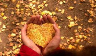 Fall Meditation Series @ Balance for Life | Selden | New York | United States