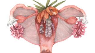 hermajesty by meagan segal_uterus