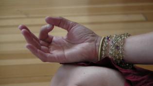 Restorative Chair Yoga: Series @ Balance for Life | Selden | New York | United States