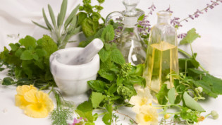 aromatherapy plants and oils