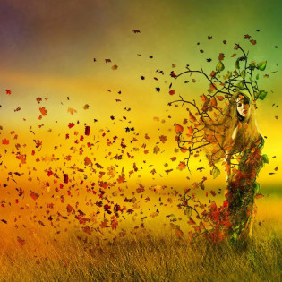 Mabon: Fall Equinox Celebration @ Balance for Life | Selden | New York | United States