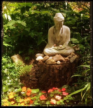 Summer Meditation Series @ Balance for Life | Selden | New York | United States