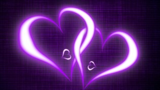 two-beautiful-violet-hearts