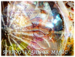 Awakening the Soul~Spring Equinox Celebration @ Balance for Life | Selden | New York | United States